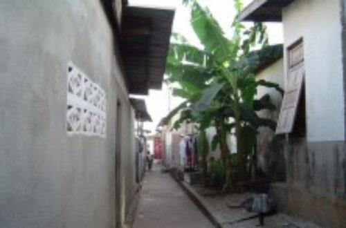 Article : Le Quartier où j'habite, c'est-à-dire Yopougon Selmer*