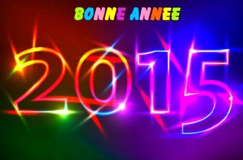 Article : EN 2015, pour mes lecteurs : je souhaite ceci…