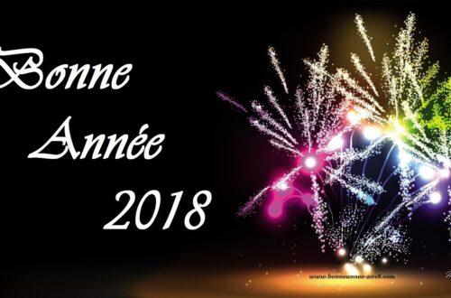 Article : A tous ceux-là, je dis Bonne et Heureuse Année2018 !